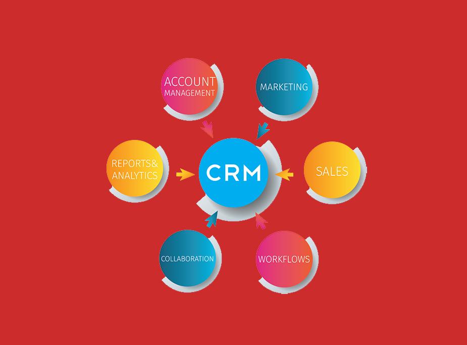 Bespoke CRM System